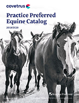 Equine Practice Preferred
