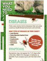 Tick-what you need to know